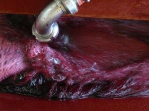 aération du moût en fermentation