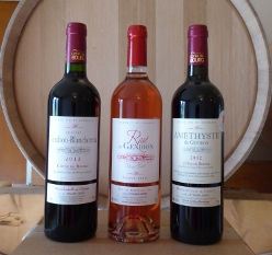 Nos vins de Côtes de Bourg et Rosé